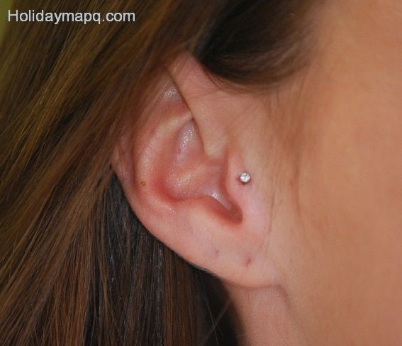 cartilage-ashley-carment