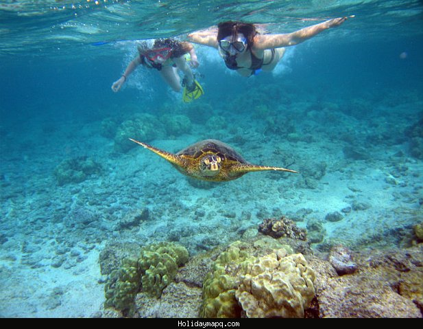 best-attractions-in-the-big-island-of-hawaii-minitime