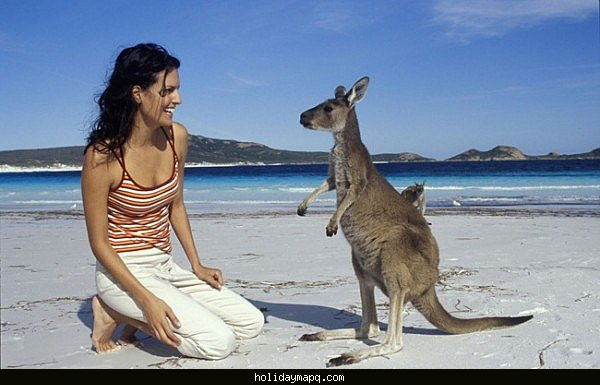 what-you-need-in-order-to-travel-to-australia-and-enter-without-