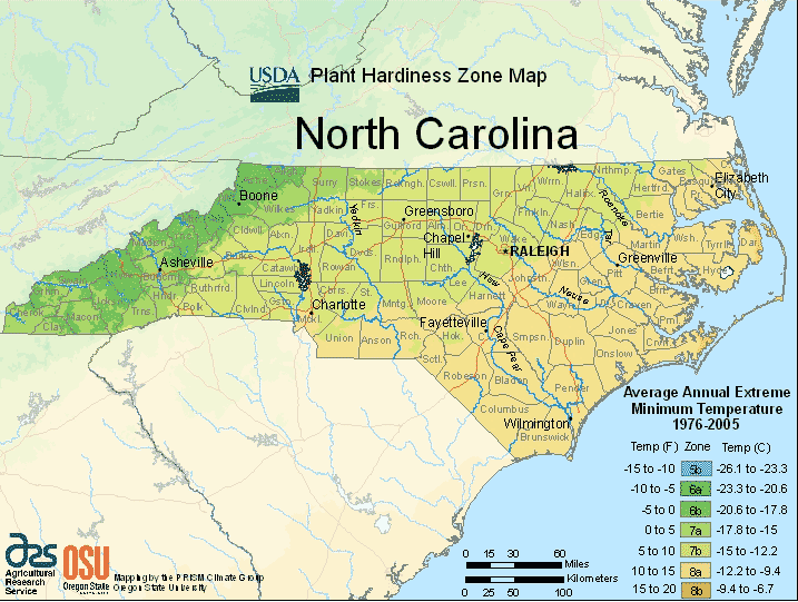 North Carolina Planting Zones – USDA Map Of North Carolina Growing ...