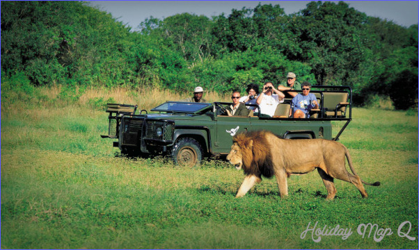 Africa Wildlife Travel Packages_6.jpg