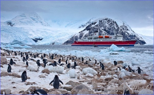Antarctica Travel Images_2.jpg