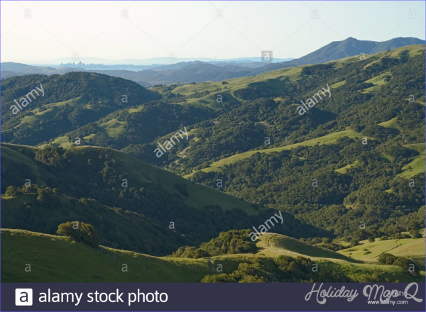 BIG ROCK-LUCAS VALLEY MAP SAN FRANCISCO_11.jpg