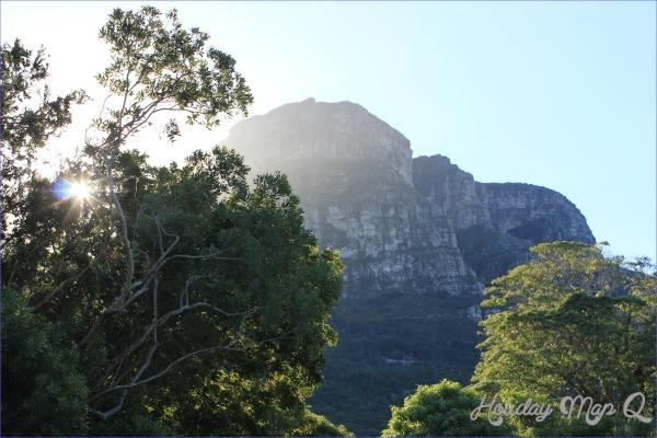 Kirstenbosch National Botanical Garden Adventure Trips_8.jpg