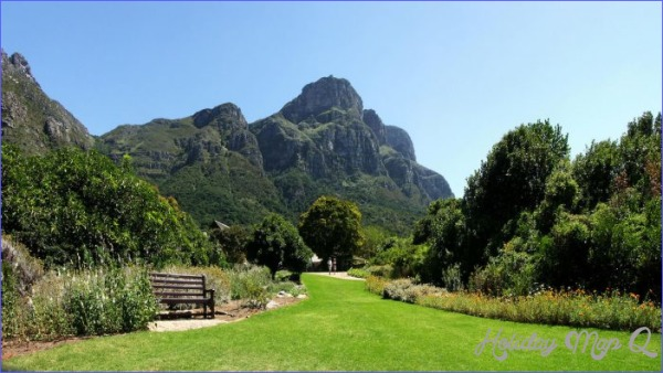 Kirstenbosch National Botanical Garden Trip Planning_11.jpg