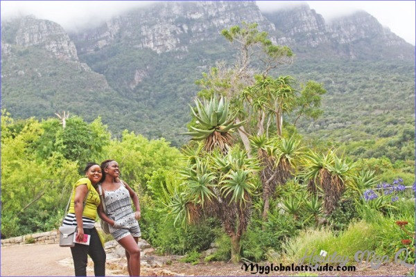 Kirstenbosch National Botanical Garden Trip Planning_6.jpg
