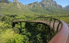 Round Trip To Kirstenbosch National Botanical Garden_1.jpg