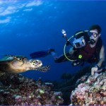 Thailand Scuba Diving - All the Best Sites | Dive The World Thailand