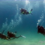 Best Place to Learn to Scuba Dive in Thailand
