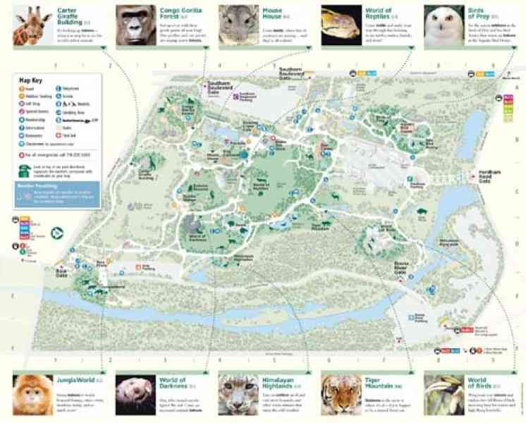 bronx zoo map 4 Bronx Zoo Map