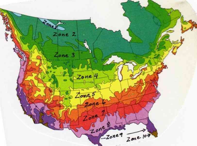 growing zone map 3 Growing Zone Map