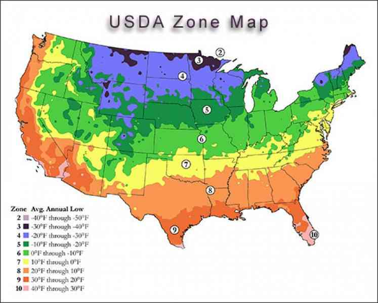 growing zone map 40 Growing Zone Map