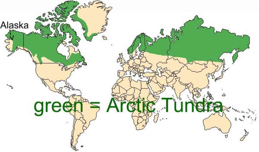 map of arctic tundra 184 Map Of Arctic Tundra