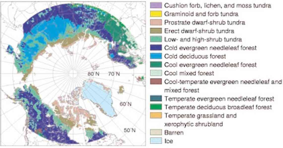 map of arctic tundra 56 Map Of Arctic Tundra